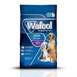 Wafcol Chicken Breeds Corn All