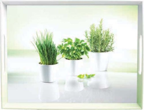 Emsa 504861 Tablett mit Herbs Dekor, Größe 50 x 37 cm, Classic