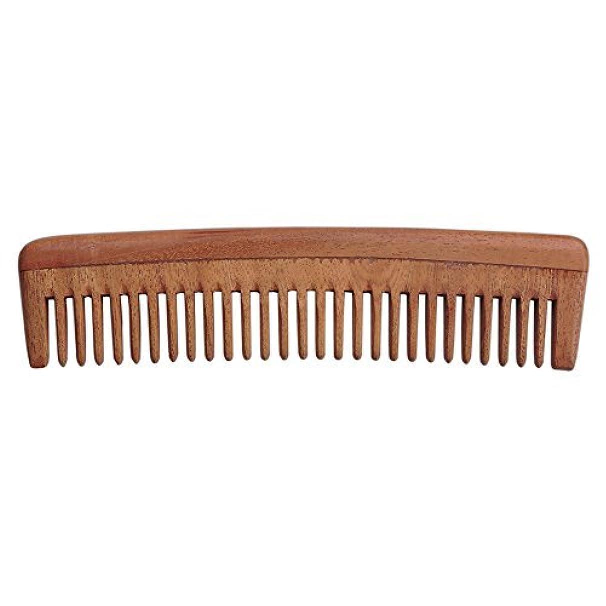 場合ヘルメット談話HealthGoodsIn - Pure Neem Wood Wide Tooth Comb for Shiny Hair | Wide Tooth Comb | Natural and Organic for Hair and Scalp Health [並行輸入品]