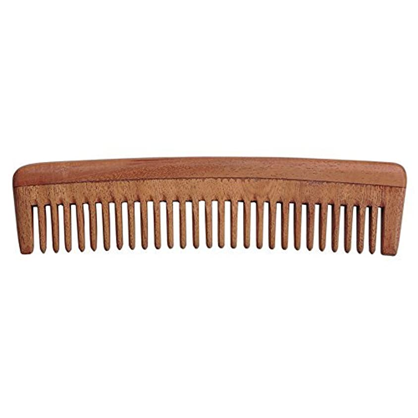 要求名前ミトンHealthGoodsIn - Pure Neem Wood Wide Tooth Comb for Shiny Hair | Wide Tooth Comb | Natural and Organic for Hair and Scalp Health [並行輸入品]