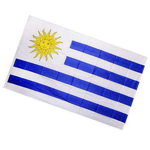 Homyl Drapeaux Banderole Pays Décoration pour Bar Fête Festival Clubs de Sport - Uruguay