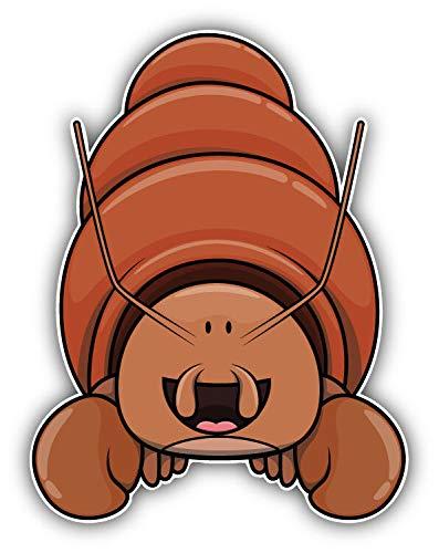 JJH Inc Funny Hermit Crab Cartoon Vinyl Decal Sticker Waterproof Car Decal Bumper Sticker 5'