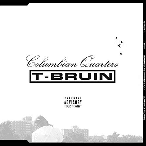T-Bruin