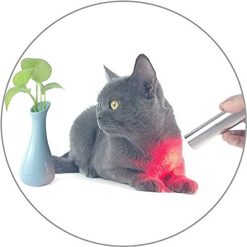 CSQHCZS-SBD Infrarotlampe Infrarot-Physiotherapielampe 3LED - LED-Lichttherapie-Taschenlampe Für Katze/Hund/Pferd,Zur Linderung Von Muskelschmerzen,Zur Verbesserung Der Durchblutung Und Der Haut