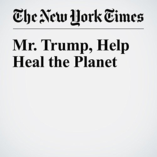 Mr. Trump, Help Heal the Planet cover art