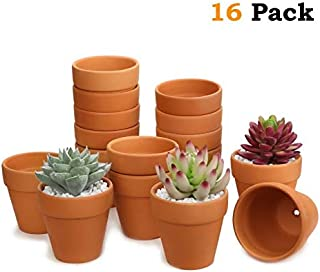 Set of 16 Terracotta Clay Pots - Great for Succulent & Cactus Nursery Planter, DIY Craft Projects, Wedding and Party Favors (3inchx 3inch)…