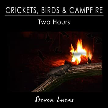 Crickets, Birds and Campfire - Two Hours