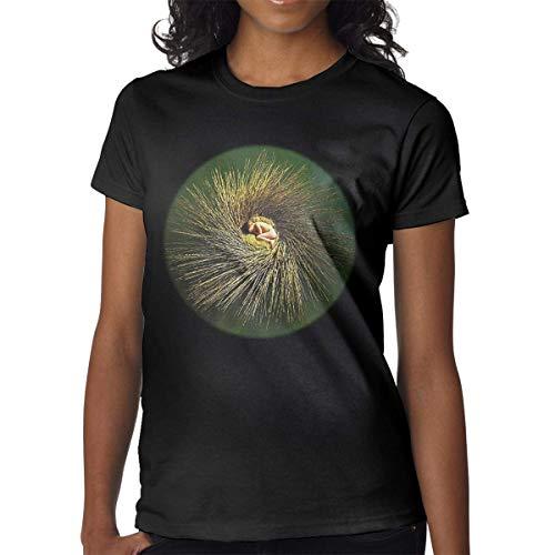 Women O-Neck Peter Gabriel - OVO T-Shirts Combed Cotton Short-Sleeve Tees Top T-Shirts & Hemden(Medium)