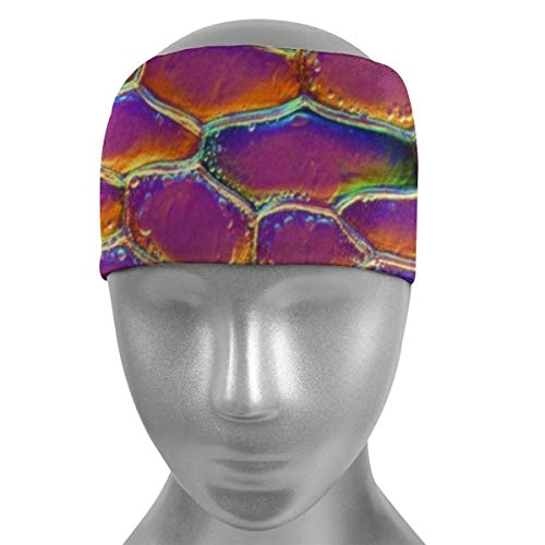 Meloci Sport Stirnbänder Pflanze Epidermis Epidermis der Zwiebel Zwiebel Weiche Sport Stirnbänder, atmungsaktives Schweißband, rutschfest absorbierende Feuchtigkeit Elastisches Kopfband
