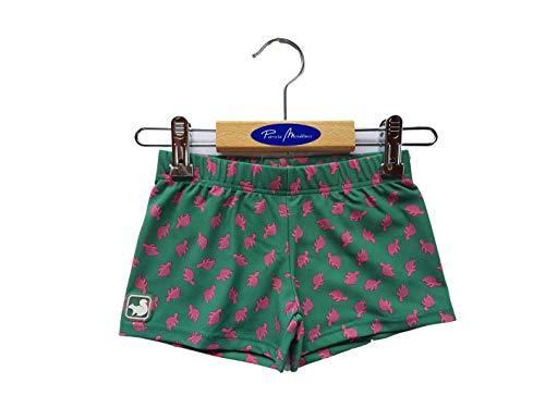 Patricia Mendiluce - Jungen Badehose Lycra Boxer - Erdbeeren farbige Schildkröten mit grünem Hintergrund