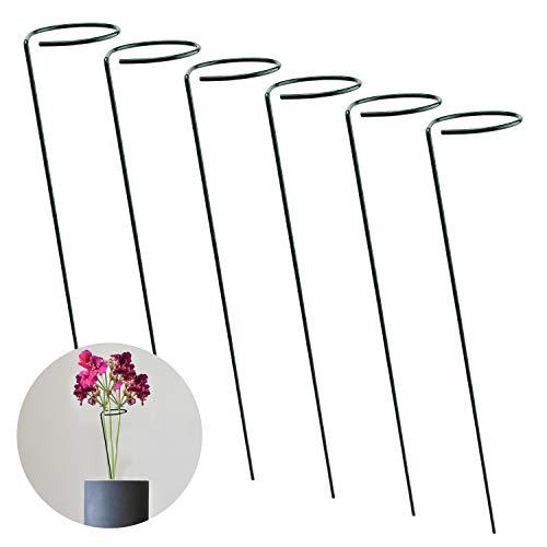 AIEX 6 Stück Pflanzenstütze Staudenhalter Strauchstütze Stahl Garden Single Stem Stützring für Pflanzen, Blume, Rose, Tomaten, Lilie, Pfingstrose (40cm)