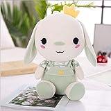 Almohada de conejo de peluche Prevenir las alergias juguete de regalo dulce hogar infantil Compañero de viaje Adornos,B45cm