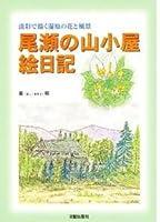 淡彩で描く湿原の花と風景 尾瀬の山小屋絵日記