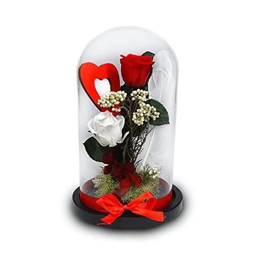 Cúpula Cristal – Flores - Rosa Bella y Bestia - Rosa Eterna - Regalo Comunión - Flores Naturales a Domicilio - Rosas - Regalo Cumpleaños – Aniversario - Rosa Preservada –Exclusivo Hecho A Mano
