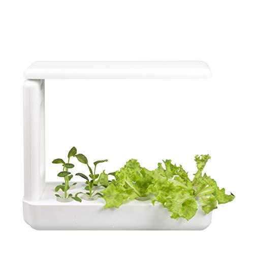 VegeBox Kitchen Hydroponik Indoor Kräutergarten • Anzuchtsystem für Pflanzen & Kräuter • 12 Pflanzen in 1-7 Wochen • intelligente Beleuchtung & Timer • 30-50% schnelleres Wachstum (Weiß)
