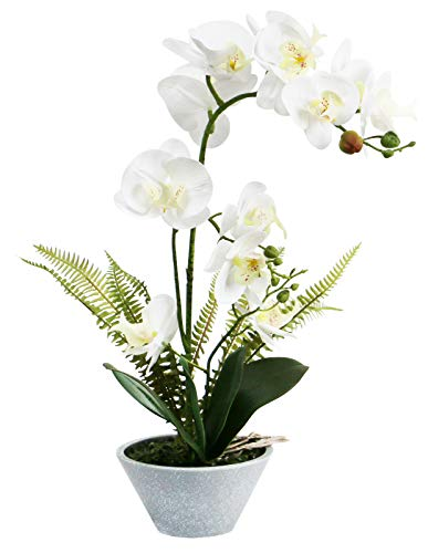 Olrla White Artificial Orchid Flower in Pot, Real Touch Fake Phalaenopsis Plant with Vase for Home Garden Office Decoration(White 3 Stem)