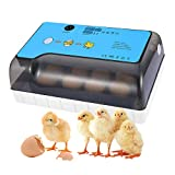 Incubadoras de 12 Huevos Automáticas, Incubadoras Huevos Automatica con Iluminación LED, Pantalla Digital y Control de Eficiente Iinteligente