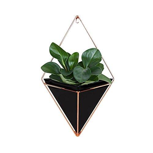 SinceY Bloempot, hangende decoratie, wandvaas, geometrische decoratie, kamerplanten/vetplanten/luchtplanten/kunstplanten, voor binnen en buiten, plafond balkon, wanddecoratie Small zwart
