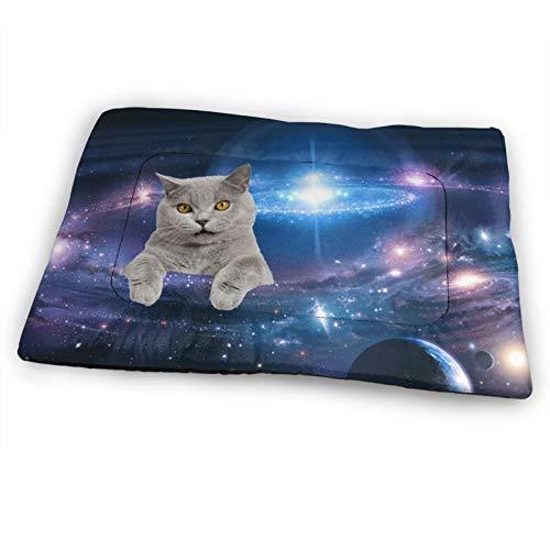 Alfombrilla para mascotas de 46 x 30 pulgadas, suave, alfombrilla para mascotas OMG gatos en el espacio interior/exterior antideslizante almohadillas lavables para mascotas colchón para perros o gatos durmiendo