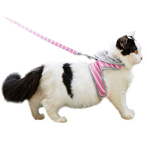 HEEPDD Arnés para Gatos, Ajustable A Prueba de Fugas Gato para Camina