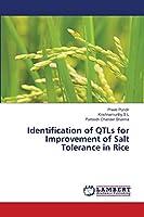 Identification of QTLs for Improvement of Salt Tolerance in Rice