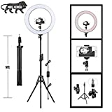 Owme 12 Inches Big LED Ring Light for Camera, Phone tiktok YouTube Video