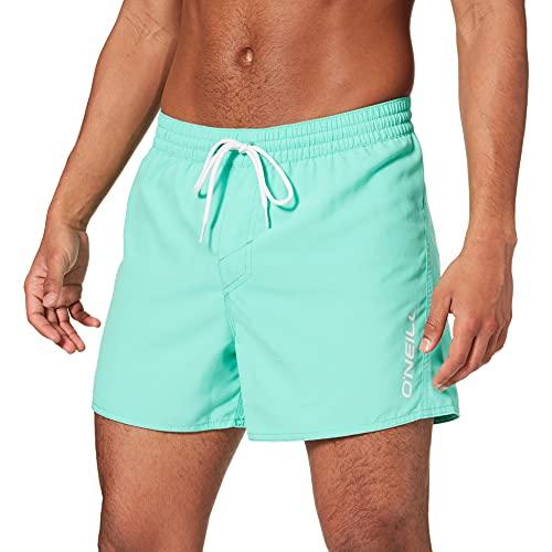 O'Neill Pm Sun&sea Shorts, Bañador para Hombre, Verde (6042 Spearmint), L