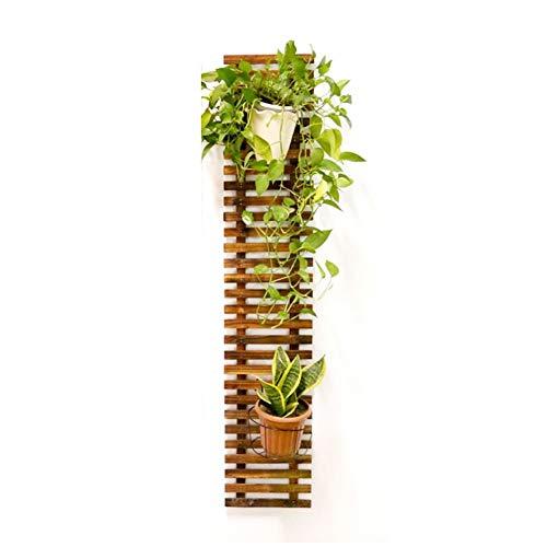 Fioriera da Esterno Fioriera A Muro for Piante Stand for Interni Balcone Pensile for Esterno, 4 Dimensioni ZSMFCD (Size : 29x150cm)