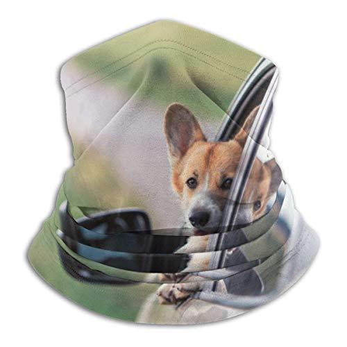 Edhead A Corgi Hundewelpenwärmer Winddichte UV-Schutzhalsmanschette Schal Bandana Gesichtsmaske für Outdoor-Aktivitäten