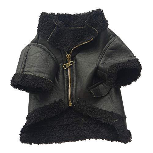 Blanketswarm Haustier-Kleidung, Metallic, modisch, Lederjacke mit Reißverschluss, gemütlich, warm, wasserdicht, winddicht, Kunstfell, für Welpen, Hunde, Winterkostüme für kleine Hunde