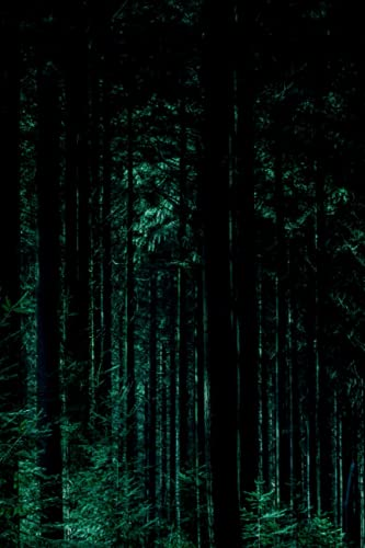 Forest Bathing Journal: Journaling Your Techniques Or Treatments Within The Presence Of Nature