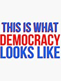 This is What Democracy Looks Like - Sticker Graphic - Political Funny Bumper Sticker for Cars Windows Trucks