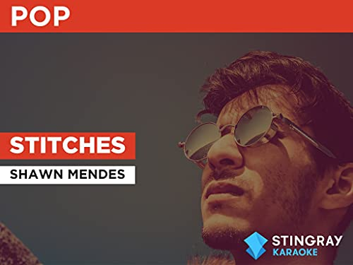 Stitches in the Style of Shawn Mendes