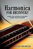 Beginner Harmonicas - Best Reviews Guide
