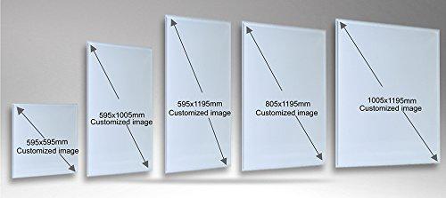 ColdFighting Top-Level 595 * 1005mm 600W Silver Aluminiumrahmen/PET Und Bild Far Infrared Bild 2*