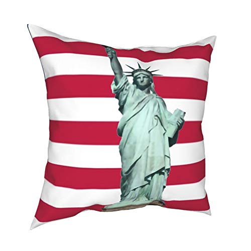 Yzn Throw Pillow Covers, Us American Resuable Cushion Cover Set -Hidden Zipper -Hypoallergenic- Wrinkle Resistant for Sofa Bed,18 X 18 Inches