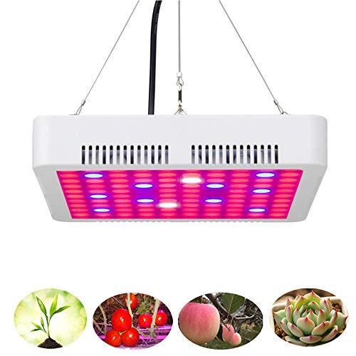 300W LCD Installatie groeit Licht Full Spectrum Grow Lamp, UV IR Planten Teelt Light goede warmteafvoer voor Indoor Kas Veg Flower hydrocultuur Planten
