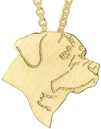 WYDSFWL Collar de Oro 1 Pieza Collar de Husky Siberiano Alaskan Malamute...