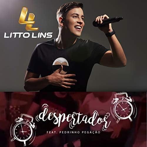 Litto Lins feat. Pedrinho Pegação
