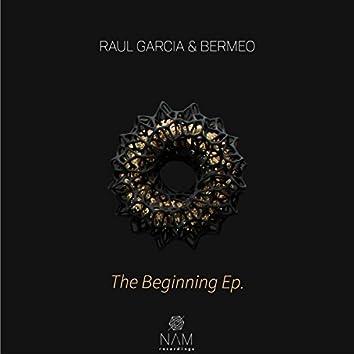 The Begining