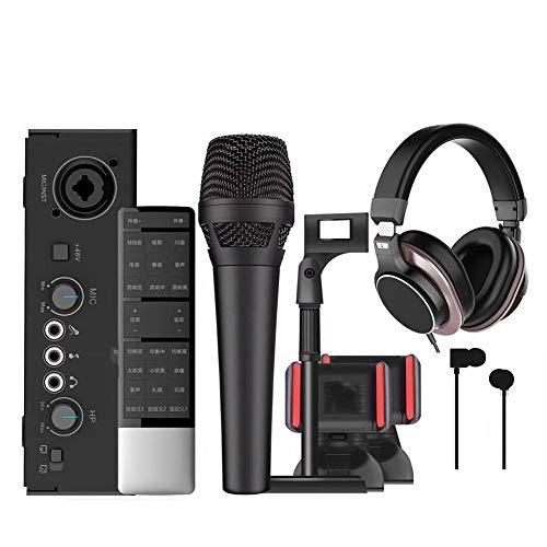 XY-M Microphone Professionnel,Microphone Pc,Système De Microphone à Main à Deux Canaux avec Microphone à Fonction écho Câble Audio pour Les Performances De Fête De Famille Karaoké