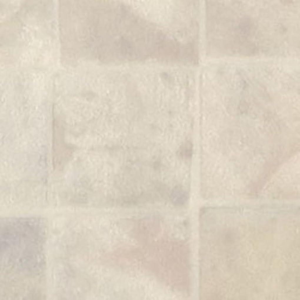 原告引き受ける引き出す【サンプル】 HM-1100 サンゲツ 住宅用 クッションフロア (石目) 品番: HM-1100 (HM-6100) 〈抗菌?お掃除簡単さらっと仕上〉簡単カット?DIY 【カットサンプル】