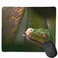 緑のヘビ 外観 目 頭 マウスパッド 運びやすい オフィス 家 最適 おしゃれ 耐久性 滑り止めゴム底付き 快適操作性 30*25*0.3cm