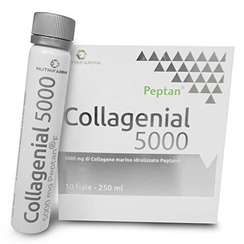Collagene Marino con Acido Ialuronico da Bere - Collagene Idrolizzato PEPTAN Massima Cura Viso Antirughe - Vitamina C + Zinco per Pelle, Articolazioni ed Ossa | 10 Fiale da 25 ml - Collagenial 5000