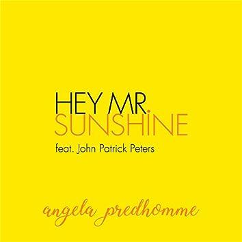 Hey Mr. Sunshine