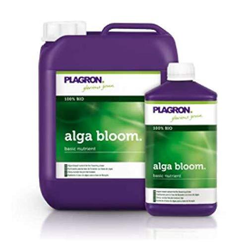 Plagron Algue Bloom 1 L
