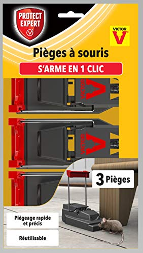 PROTECT EXPERT SOUTRAP3 Pièges À Souris-3 Tapettes Plastiques-Rapide, Précis Et Faciles A Utiliser, Incolore
