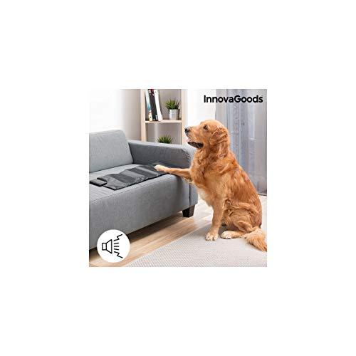 InnovaGoods IG115823 Esterilla de Adiestramiento para Mascotas