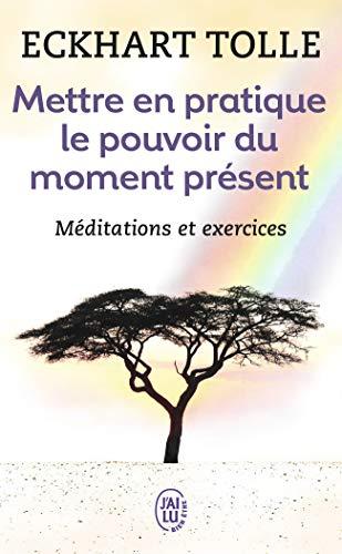 Die Kraft der Gegenwart in die Praxis umsetzen: Grundlegende Lehren, Meditationen und Übungen, um ein befreites Leben zu genießen