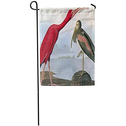 Zome Lag Tuinvlaggen Seizoen Vlag Banners 32X45.7CM 1827 Audubon Scarlet Ibis 1838 Biologie Vogels Amerika Outdoor Decoratieve Huis Yard Vlag